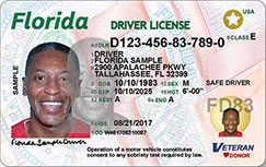 Florida Driver's License Design (Front)