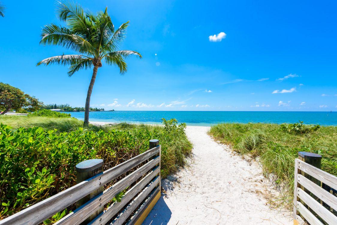 Sombrero Beach with palm trees on the Florida Keys, Marathon, Florida