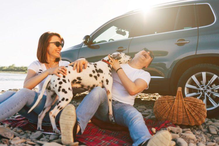 Pets & Hot Cars