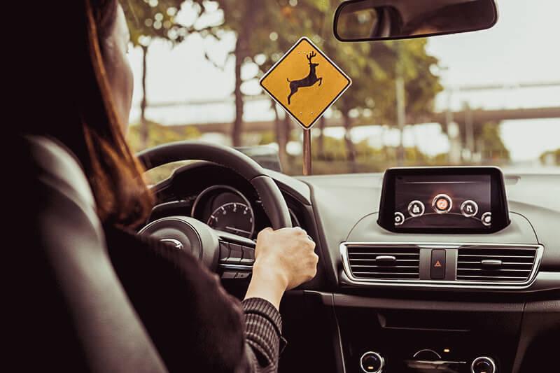 driving scenarios
